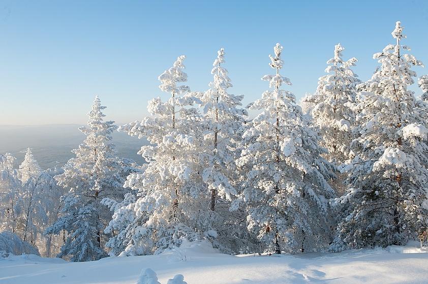 Екатериновка приморский край погода на