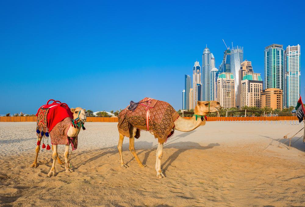 Пляж. Дубай, ОАЭ.