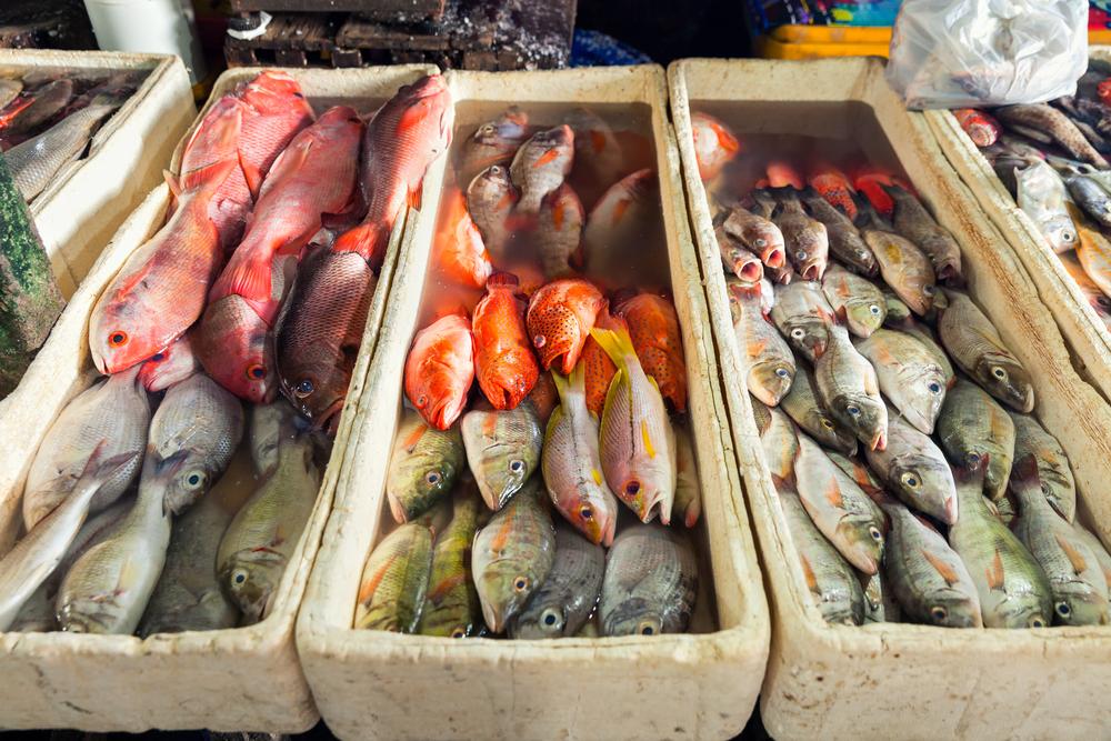 Рыбный рынок, Джимбаран