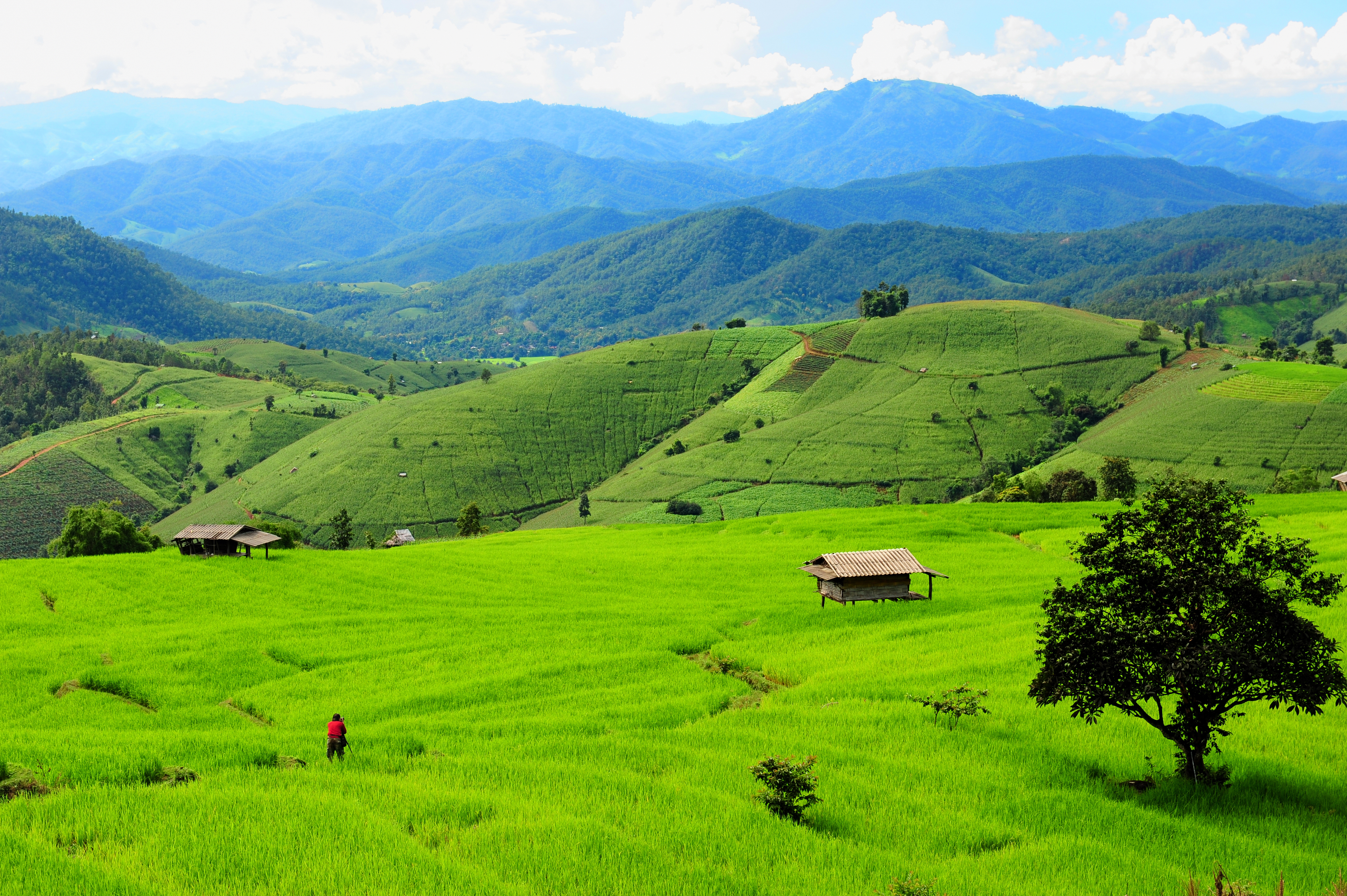 Гористый пейзаж в Чиангмае
