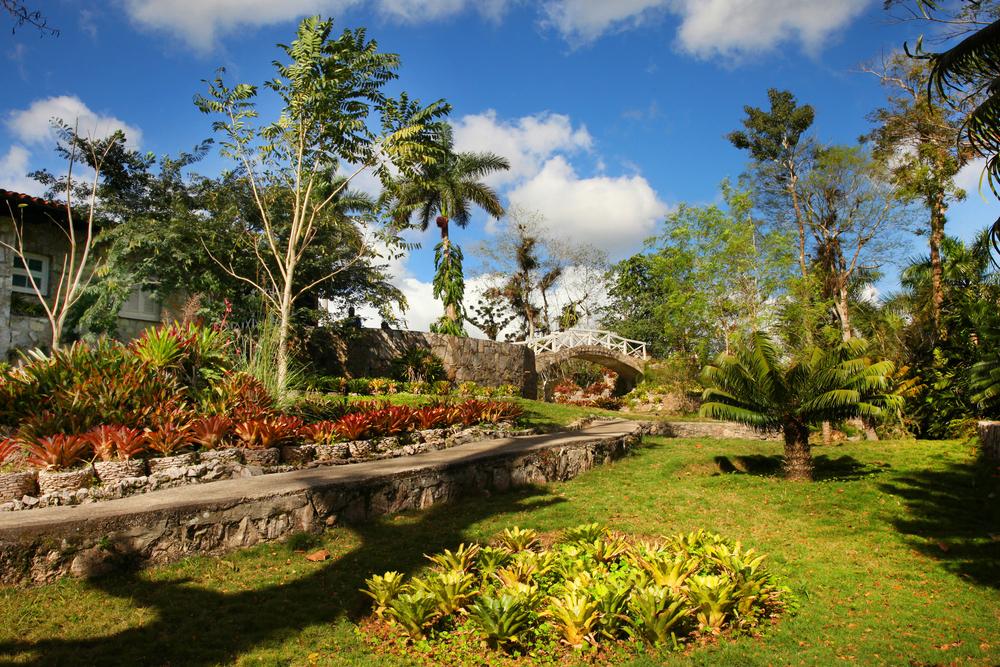 Сад орхидей Сороа
