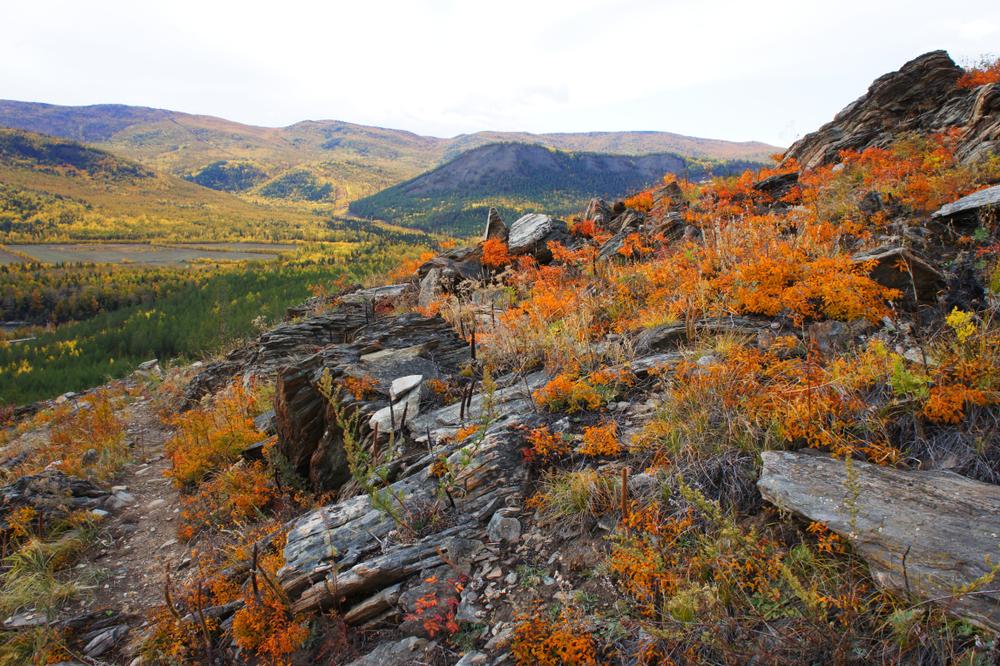 Природа в окрестностях Северобайкальска