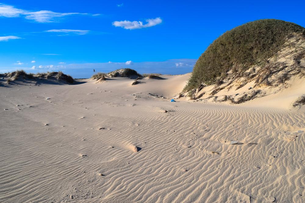 Дикий пляж Острова Фламинго, Джерба, Тунис.